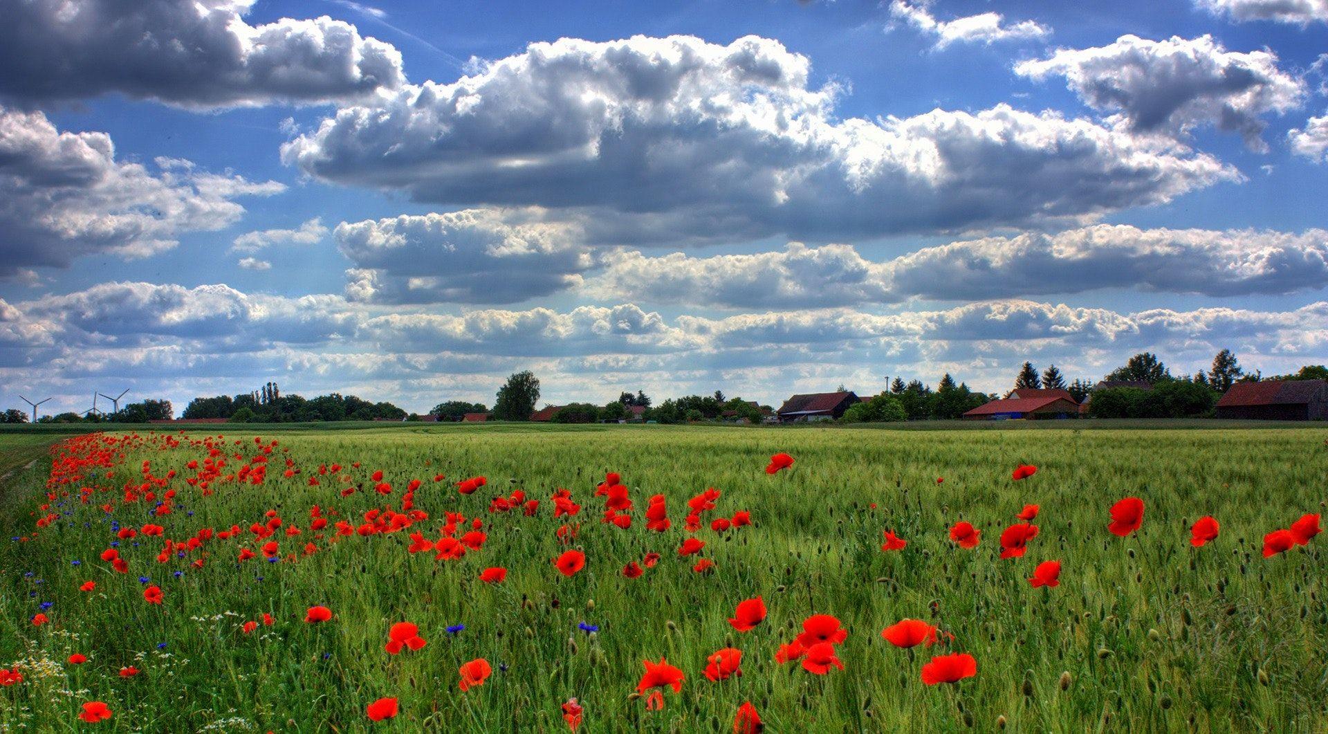6 leuke tips om dit voorjaar te doen